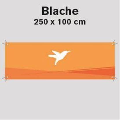Bild von Blache, 250 x 100 cm
