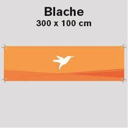 Bild von Blache, 300 x 100 cm